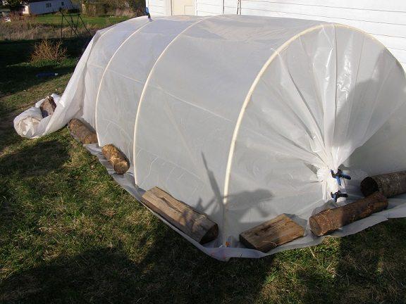 seedlign hoop-house