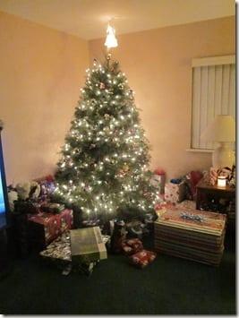 IMG 5537 thumb I Won't Be Home For Christmas