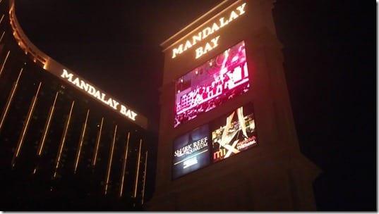 IMAG0068 thumb Rock N Roll Las Vegas Half Marathon '11