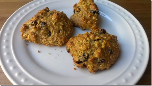 IMAG5001 800x450 thumb Skinny Oatmeal Cookie Recipe