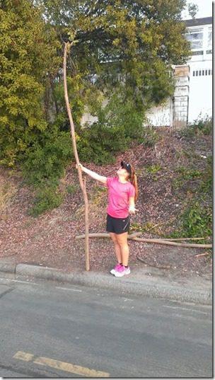 walking stick 287x510 thumb Marathon Taper Tips Tuesday