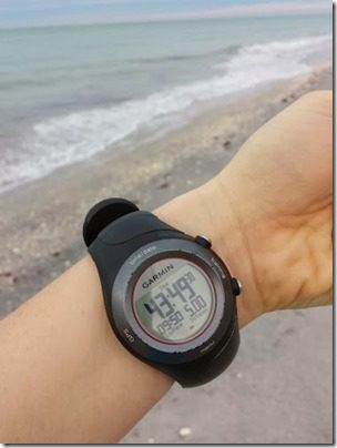 5 miles on the beach florida 376x501 thumb Last Day in Florida for 2013