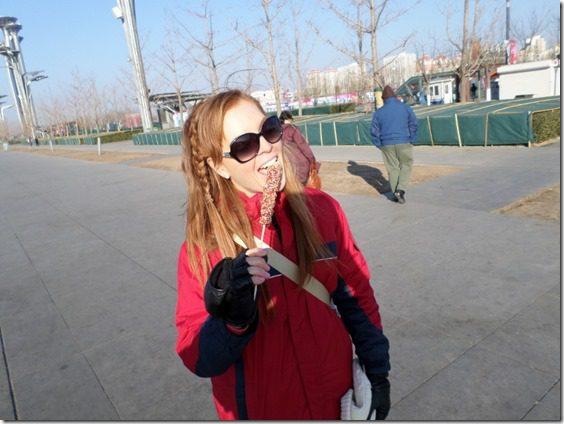 SAM 0129 800x600 thumb China Pandas and the Olympic Stadium