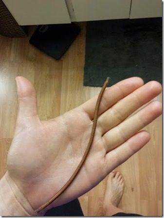 broken rubberband 376x502 thumb Scenes from Saturday