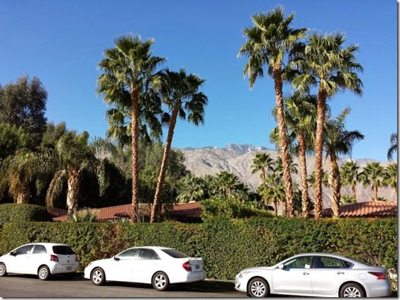 palm springs half marathon recap running review 669x502 thumb Palm Springs Half Marathon Recap Results and Regrets