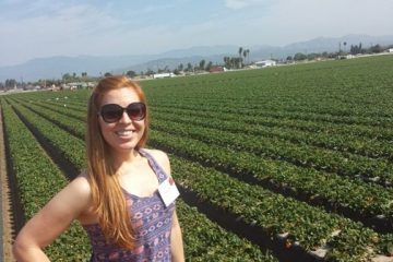 California Strawberry Farm Tour