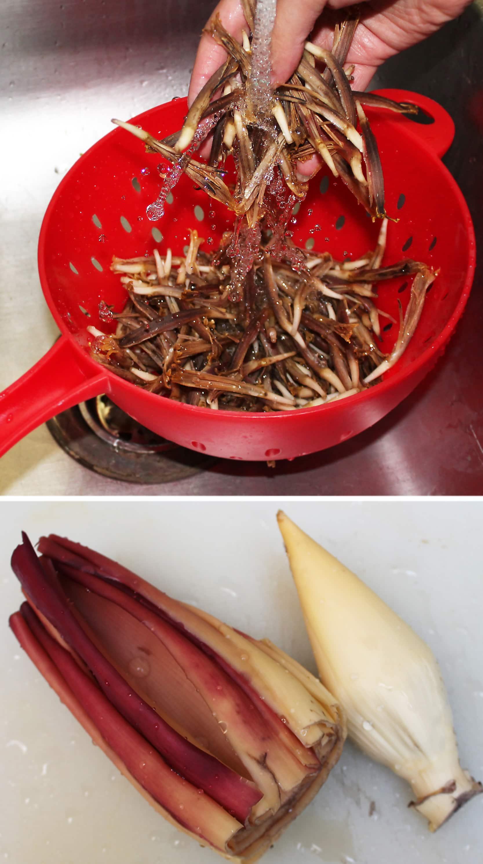 bananaflowerPREP