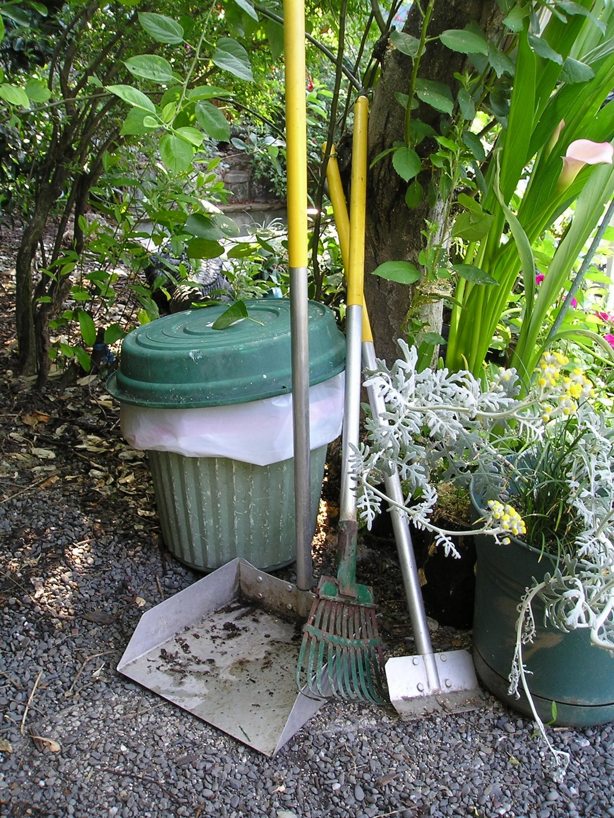 Backyard Clean Up How To Make Cleaning Your Backyard A Breeze Runyon Equipment