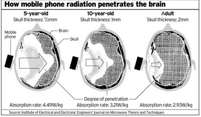 mobile cell phone radiation