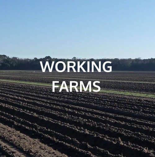 working farms