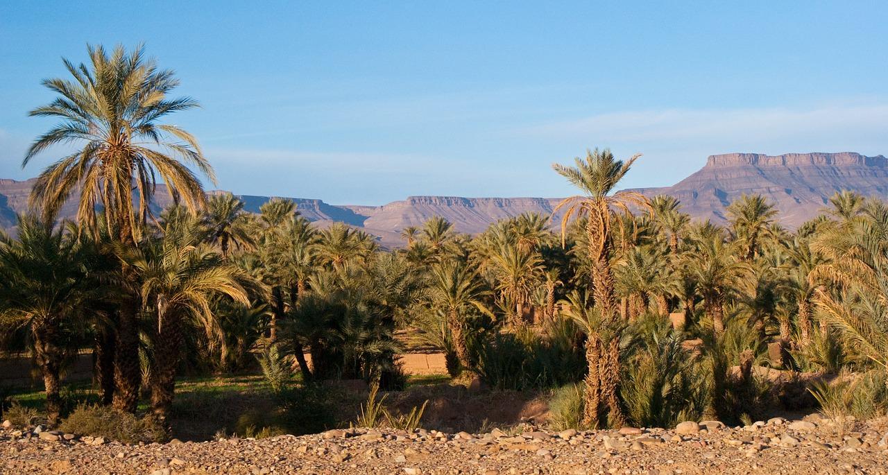 desert-897671_1280 (2)