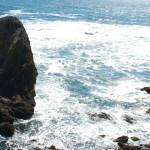 An Oregon Coast Sampler