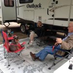 How to Start RVing with Dogs and Cats