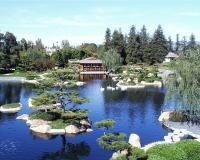 Japanese Garden - Van Nuys, Los Angeles