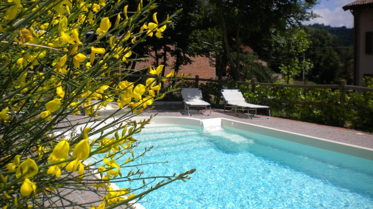 Pool Im Garten Hygiene Agriturismo Il Cavicchio Pianoro Updated 2019 Prices