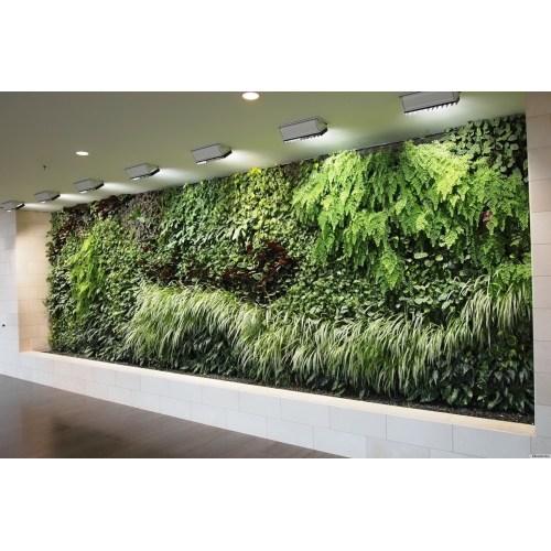 Medium Crop Of Diy Indoor Vertical Garden