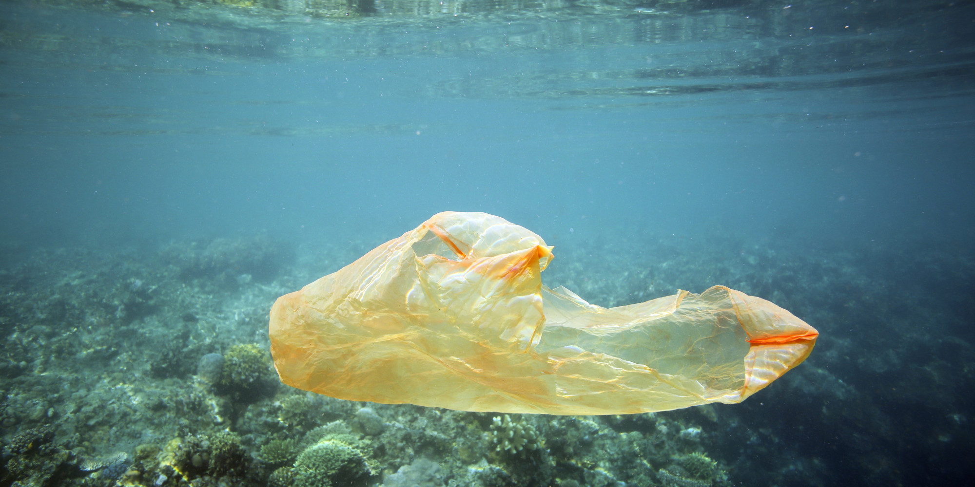 Plastikbank How To Solve The Plastic Pollution Problem And Poverty At