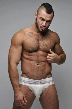 gay male ass