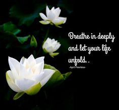 The Yellow Wallpaper Power Struggle Quotes 1000 Ideas About Lotus Flower Quote On Pinterest Lotus