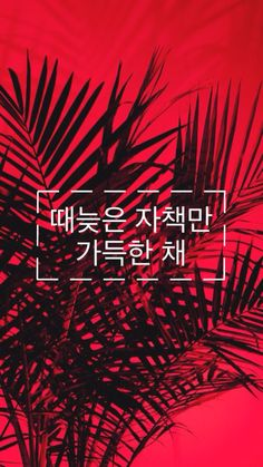 Bts Quotes Wallpaper Iphone Hd Nct U Wallpaper For Phone ♪nct♪ Pinterest Nct