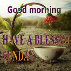 Tea Wallpaper Quotes 1000 Images About Blessed Sunday On Pinterest Happy