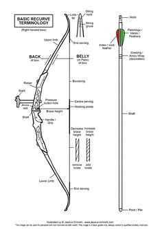 nasp archery diagram