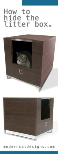 Kitty Tools on Pinterest | Cat Design, Modern Cat ...
