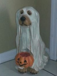1000+ images about ghost costume on Pinterest   Ghost ...