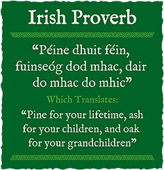Happy Mothers Day To My Sister Singing Wallpaper Quotes 1000 Images About Irish Blessings Amp Toasts On Pinterest