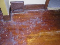 1000 Images About Repairing Hardwood Floors On Pinterest