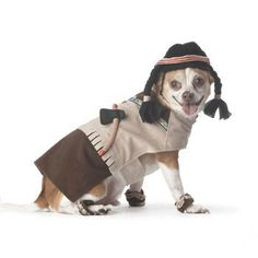 1000+ images about Dog Costumes on Pinterest