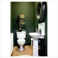 1000+ ideas about Dark Green Bathrooms on Pinterest ...