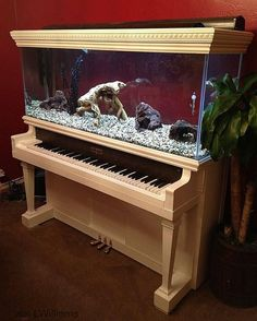 1000  images about Kaye's Repurpose Recycle Reuse Ideas on Pinterest