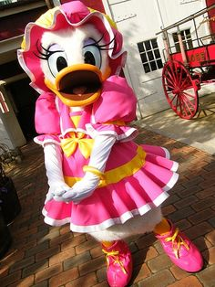 Cute Minnie Mouse Wallpaper 1000 Images About 187 Daisy 187 On Pinterest Daisy Duck