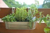 DIY hanging Garden idea using a trellis. Idea for the ...