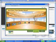 Interactive Websites