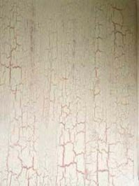 HOW TO CRACKLE PAINT A WALL | Painting | Pinterest | Paint