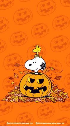 Peanuts Fall Iphone Wallpaper 1000 Ideas About Halloween Wallpaper Iphone On Pinterest