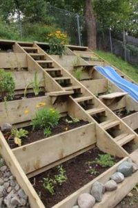 1000+ images about Backyard Ideas and Decor on Pinterest