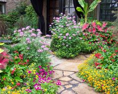 1000 images about landscaping on pinterest texas