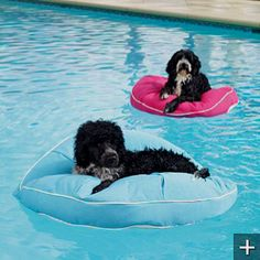 1000 images about pool outdoors on pinterest