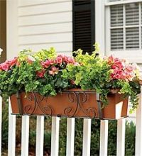 WINDOW BOXES and CONTAINER GARDENS on Pinterest | Window ...