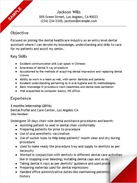 157 best Resume Examples images on Pinterest Resume examples - resume examples for dental assistant