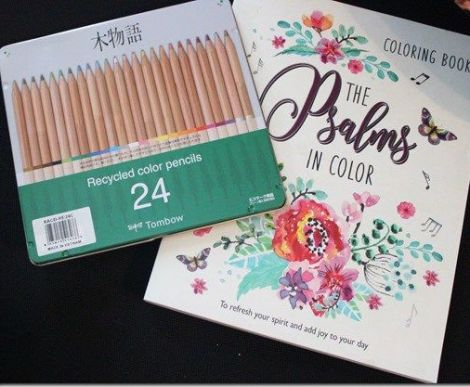 Review: Tombow Recycled Colored Pencils, Assorted Colors, 24-Pack | Paulette's Papers: