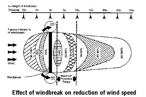 wind erosion diagram