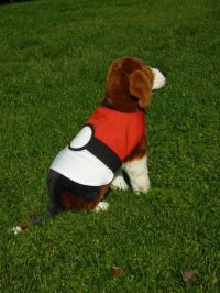 Pokemon, Dog costumes and Anime cosplay on Pinterest