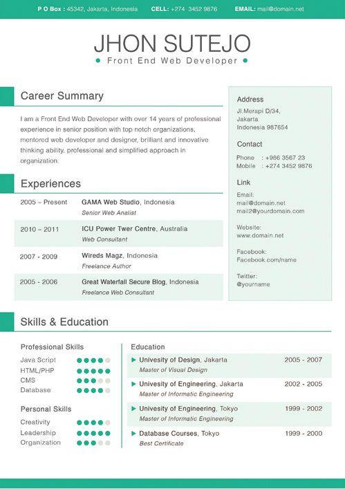 developer 2000 resume