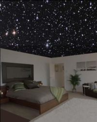 starry night ceiling | Bedroom | Pinterest | Starry nights ...