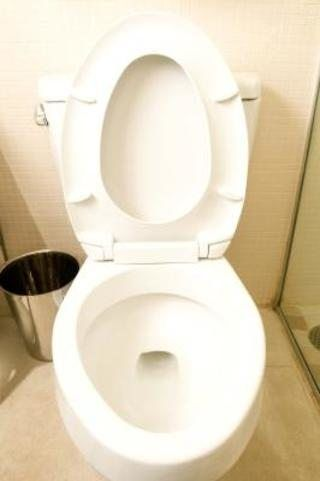 Toilet And Clogged Toilet On Pinterest