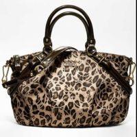 Cheetah Print Coach Purse! | thisbags | Pinterest ...